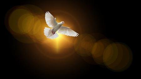 RELIGIA: ZIELONE ŚWIĄTKI