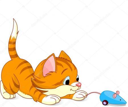Zabawy z kotem - 10.11.2020