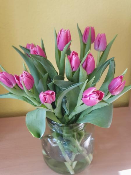 8 marca - miły akcent od Wojtka dla naszych małych kobietek!