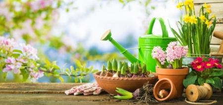 Witamy Wiosnę