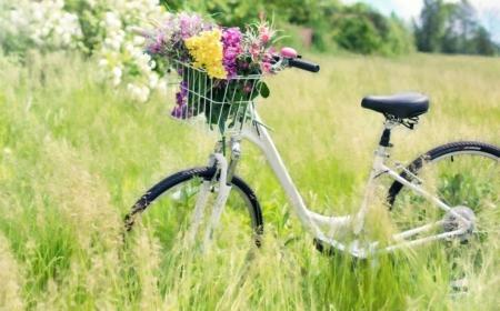 07.04.2021r środa - Wycieczka rowerowa