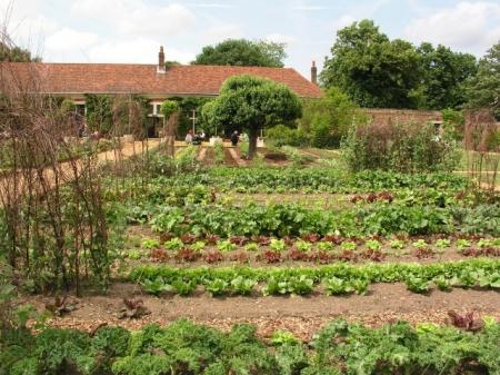 Wiosenne porządki w ogrodzie - 08.04.2021