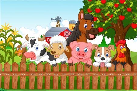 WIOSNA NA WSI – 1. Psotna świnka