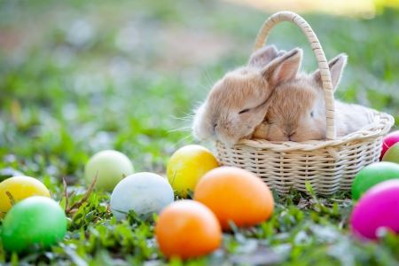 WIELKANOC – 5. Wielkanocne świętowanie