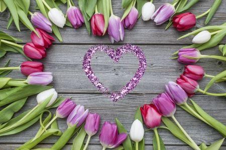 RODZINA – 3. Tulipany dla rodziców